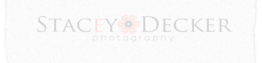 Stacey Decker Photography logo